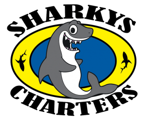 Sharky's Charter Fishing